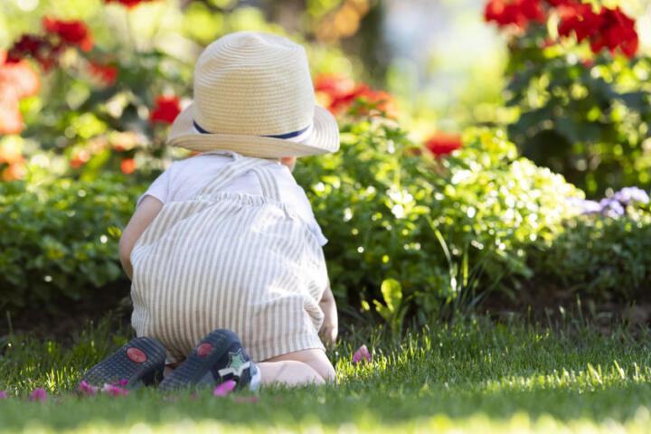 piante pericolose bambini