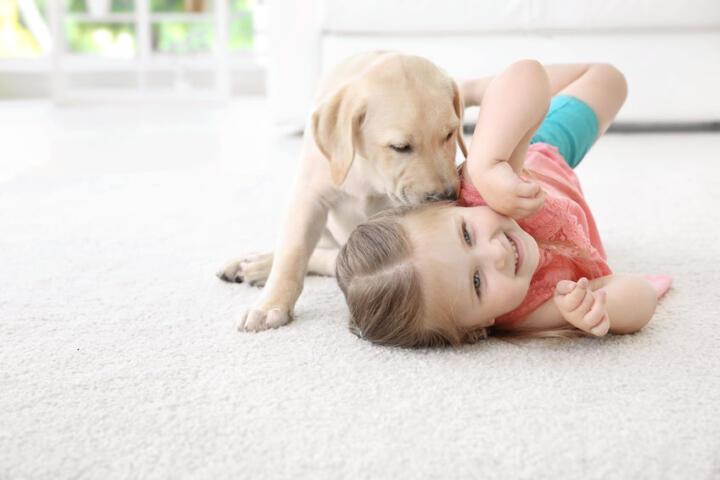 preparare bambini arrivo animale