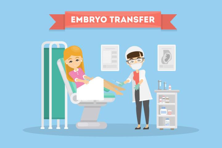 embrio transfer