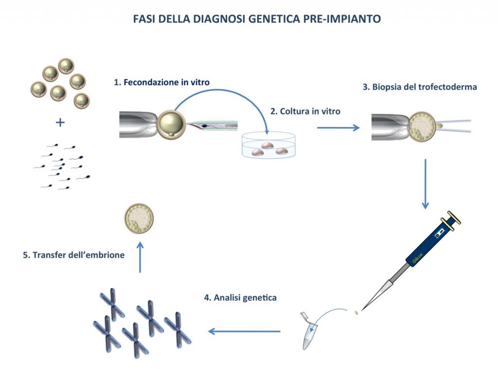 pgd-pgs_fasi_diagnosi_genetica_pre