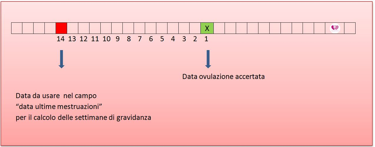 Calendario Della Gravidanza Calcolo.Come Calcolare Le Settimane Di Gravidanza Se Ho Cicli