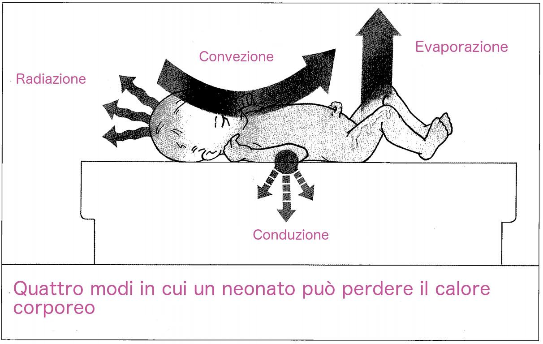 termoregolazione neonato