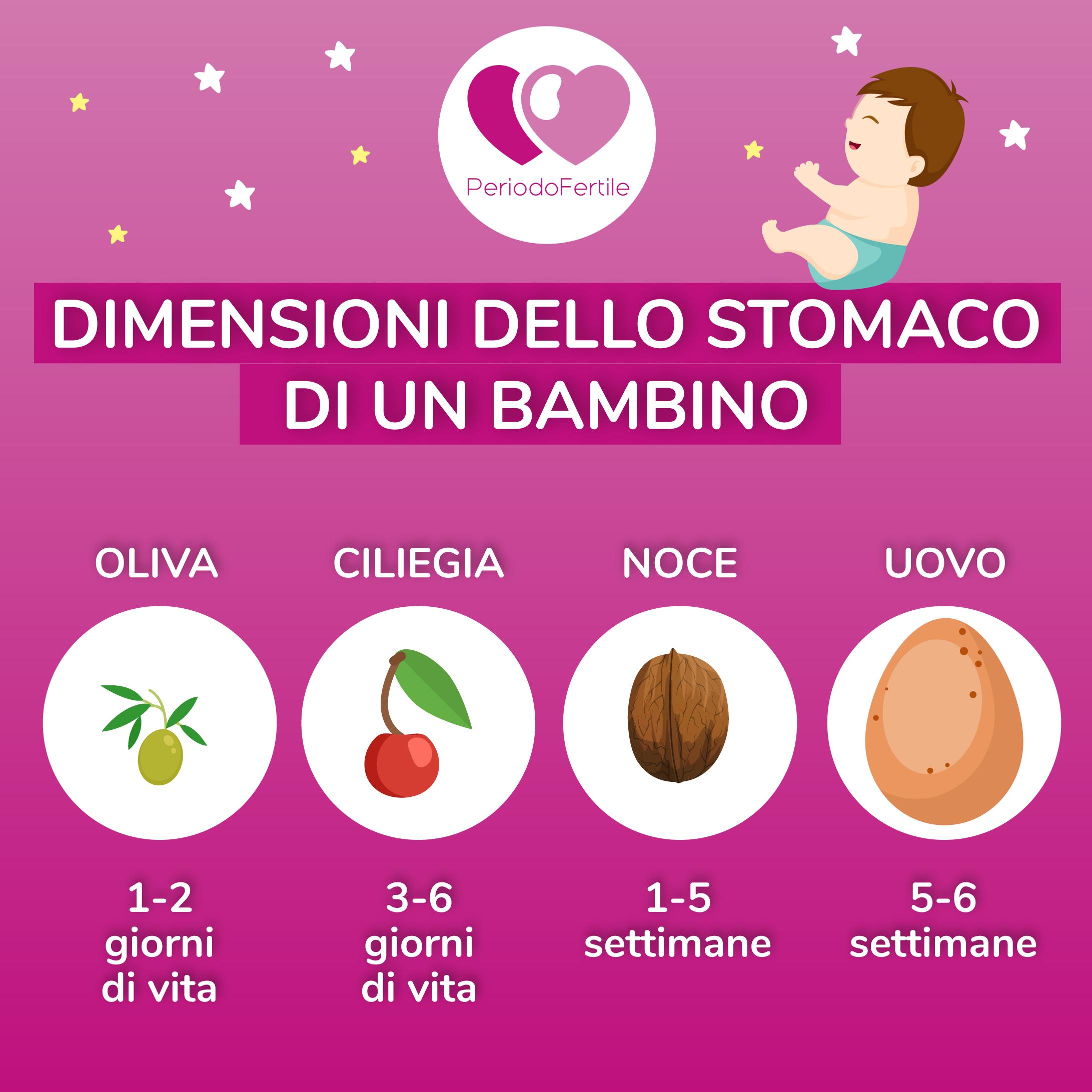 dimensione stomaco neonato allattamento